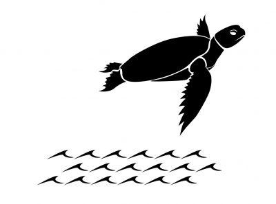 fliegende-schildkröte-logo3